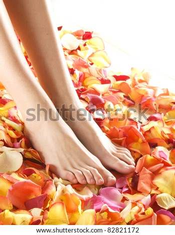 Beautiful legs with the flower petals