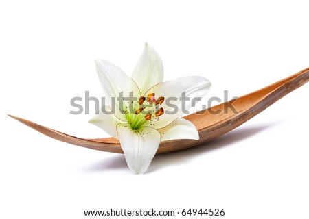 Beautiful lily flower set on a dried coco palm leaf, isolated on white