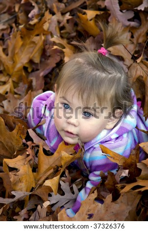 Beautiful little blue eyed girl in colorful purple and blue  sweater playing in fall leaves.