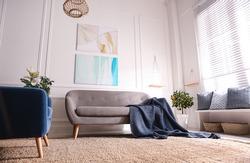 Beautiful living room interior with comfortable gray sofa