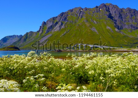 Beautiful Lofoten Norway #1194461155