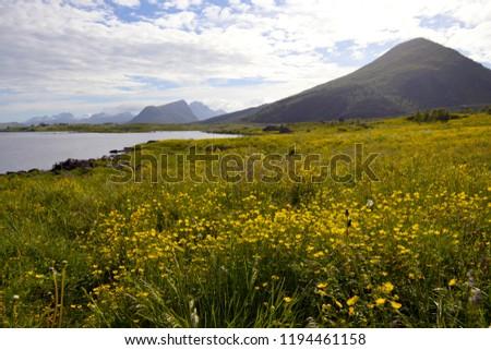 Beautiful Lofoten Norway #1194461158