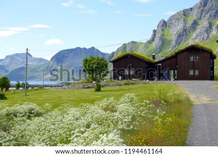 Beautiful Lofoten Norway #1194461164