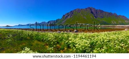 Beautiful Lofoten Norway #1194461194