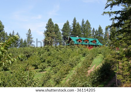 Beautiful log house on top of a hill in a cherry orchard in the Okanagan Valley, British Columbia, Canada