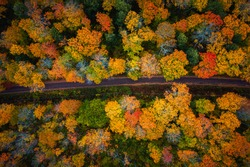 Beautiful look down photograph of a narrow paved road curving through the forest near the with gorgeous yellow, orange, red and green autumn foliage or leaves on the treetops below in Upper Michigan.
