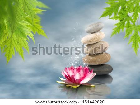 beautiful lotus flower on water close-up #1151449820