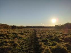Beautiful low winter sun, complete freedon
