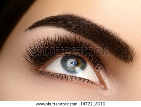 Beautiful Macro Female Eye with Extreme Long Eyelashes and Celebrate Makeup. Perfect Shape Make-up, Fashion Long Lashes. Cosmetics and make-up. Closeup macro shot of fashion eyes visage