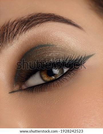 Beautiful macro shot of female eye make-up in smoky eyes style and arrow. Green eye. Creative make-up. Perfect shape make-up and long lashes. Cosmetics. Beautiful eyes make-up. Close-up