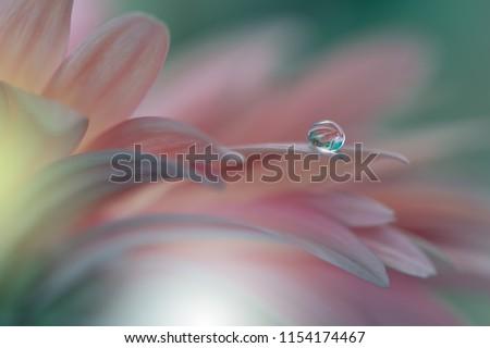 Beautiful macro shot of magic flowers. Border art design. Magic light.Extreme close up macro photography.Conceptual abstract image.Purple spring Background.Fantasy Art.Creative Nature Wallpaper.