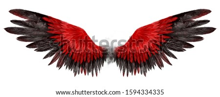 Beautiful magic red black wings drawn with watercolor effect Stock photo ©