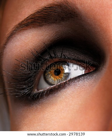 beautiful make up and brown eyeshadow  of eye