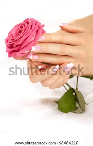 Beautiful manicure nails with a rose