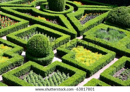 Beautiful maze garden