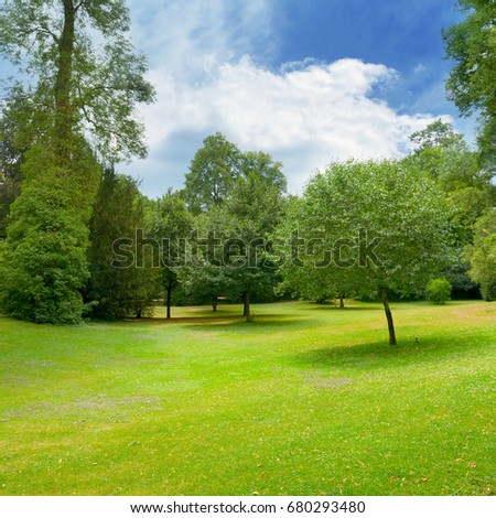Beautiful meadow covered with grass in  park and  beautiful sky with white clouds. #680293480