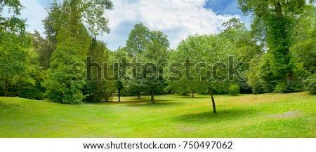 Beautiful meadow covered with grass in the park and a beautiful blue sky with clouds.