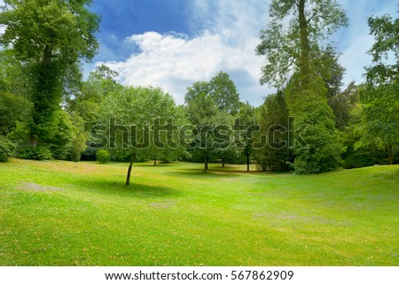 Beautiful meadow covered with grass in the park and a beautiful blue sky with white clouds. #567862909