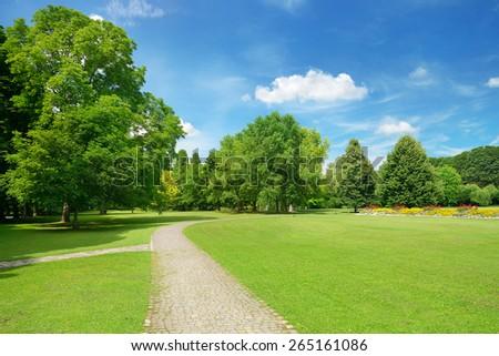 Beautiful meadow in the park - Shutterstock ID 265161086
