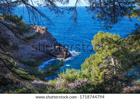 Beautiful mediterranean seascape with rocky cliffs and green pines above the sea, natural environment and outdoor destination Stok fotoğraf ©