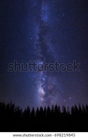 Beautiful milkyway and silhouette of pine tree on a night sky with stars and space dust in universe - Shutterstock ID 698219845