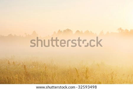 Beautiful misty landscape in sunrise