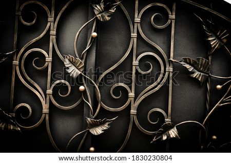 Beautiful modern forged metal fence elements, luxury fence Stock fotó ©
