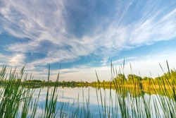 Beautiful moody high resolution colorful and dramatic wide anlge shot of a spring landscape with blue lake, trees, canes, countryside and a nice blue sky with white clouds reflecting in the water