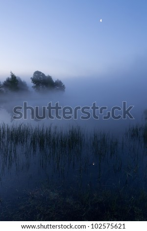 Beautiful moonlight before sunrise in a landscape with fog