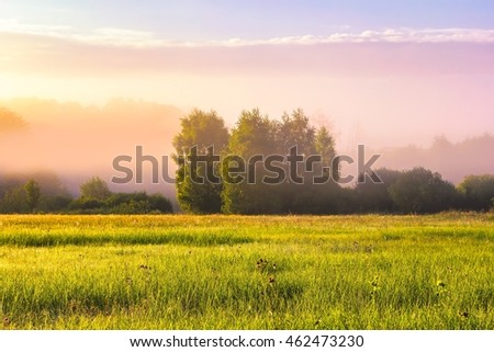 Beautiful morning foggy meadow landscape. Polish countryside at summer. #462473230