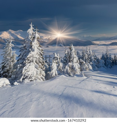 Beautiful morning landscape in the mountains in winter