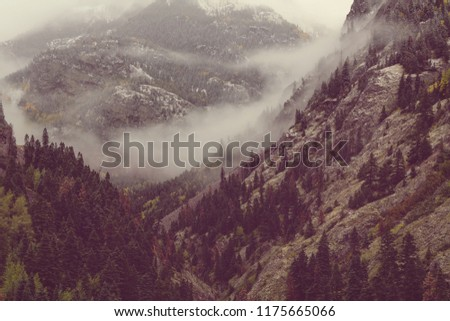 Beautiful morning scene in the mountains. Fog at sunrise.