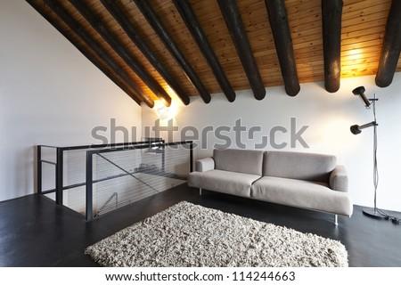 beautiful mountain home with modern furniture