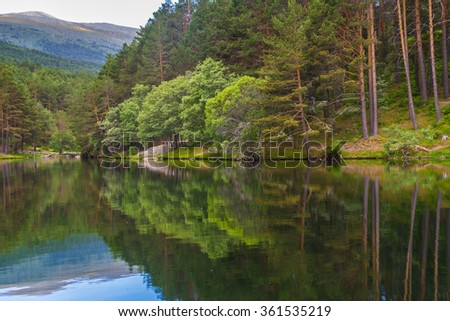 Stock Photo Beautiful mountain lake in the forest