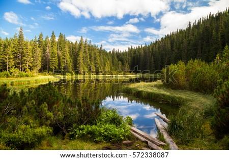 Beautiful mountain lake Maricheika in the Ukrainian Carpathians. Summer sunny day. Ukrainian nature of the beautiful places of the country. Buffer zone.