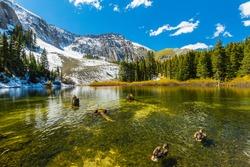 Beautiful mountain landscape in Telluride, Colorado, on a bright sunny day