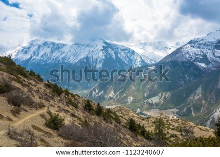 Beautiful mountain landscape with trees, bushes and snowy mountains in the Himalayas, Nepal. #1123240607