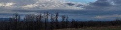 Beautiful Mountain Panorama near Lake Champlain Vermont USA