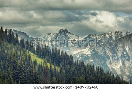 Beautiful mountain peak in  North Cascade Range, Washington / USA #1489702460
