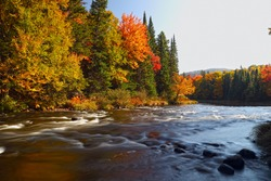 Beautiful Mountain River in Canada.Autumn in Canada. Current water. Tree on the stone. Stream water. waterfall landscape in Canada.The red maples leaves frame this beautiful waterfall.