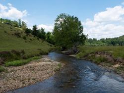 Beautiful Mountain Stream in Alleghany County, North Carolina