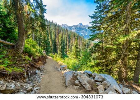 Beautiful Mountain Trail View at Joffre Lakes, British Columbia, Canada.