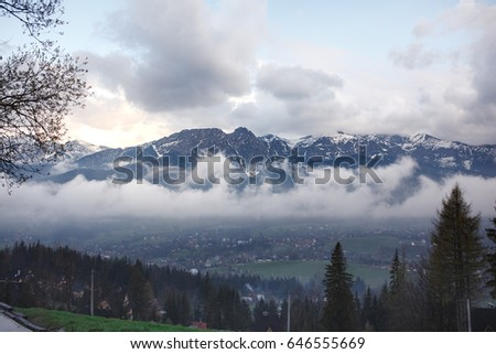 Beautiful mountains and forests, summer natural landscape #646555669