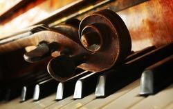 Beautiful music instruments