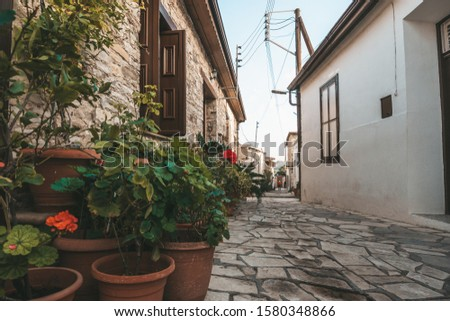 Beautiful narrow street of Pano Lefkara village, Cyprus with flower pots and masonry. #1580348866