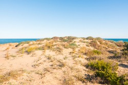 Beautiful natural dune near the shore. Peaceful atmosphere. Another planet.