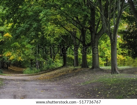 Beautiful natural landscape in the summer time #517736767