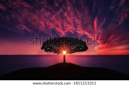 Beautiful Nature and Sunset, Coucher de Soleil Foto stock ©