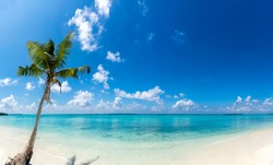 Beautiful Nature Beach Image shot from Maldive Funadhoo Island best place to visit in the world Blue sky and turquoise color sea with coconut tree summer holiday background