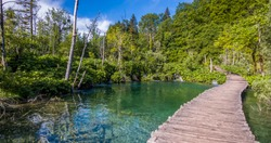 beautiful nature Croatia surrounded by water and green foliage
